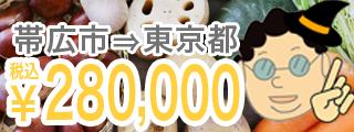 帯広市⇒東京都 ¥280,000